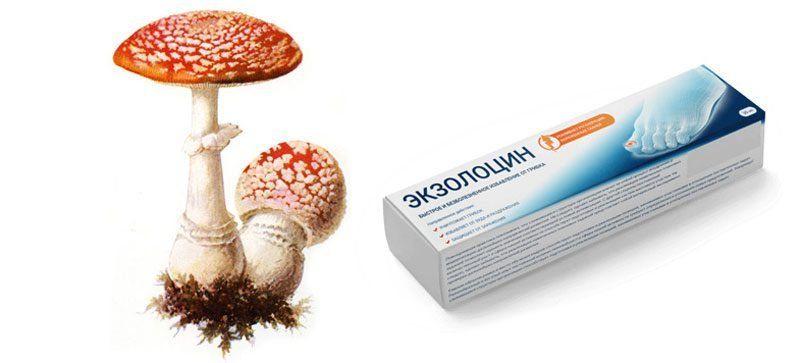 Препарат Экзолоцин
